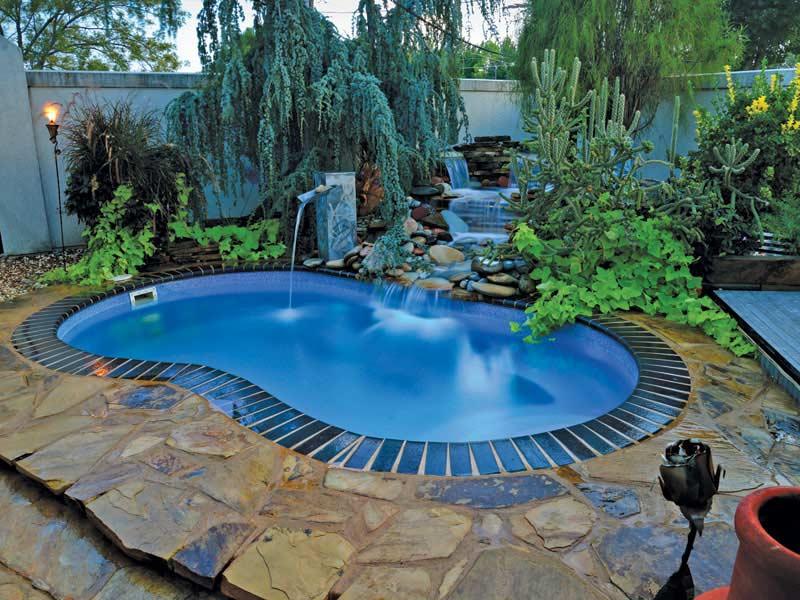 Kidney Swimming Pool Designs