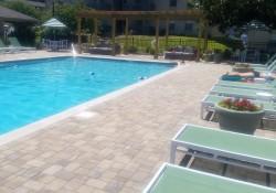 19_gunite_pool_ready_to_swim.jpeg